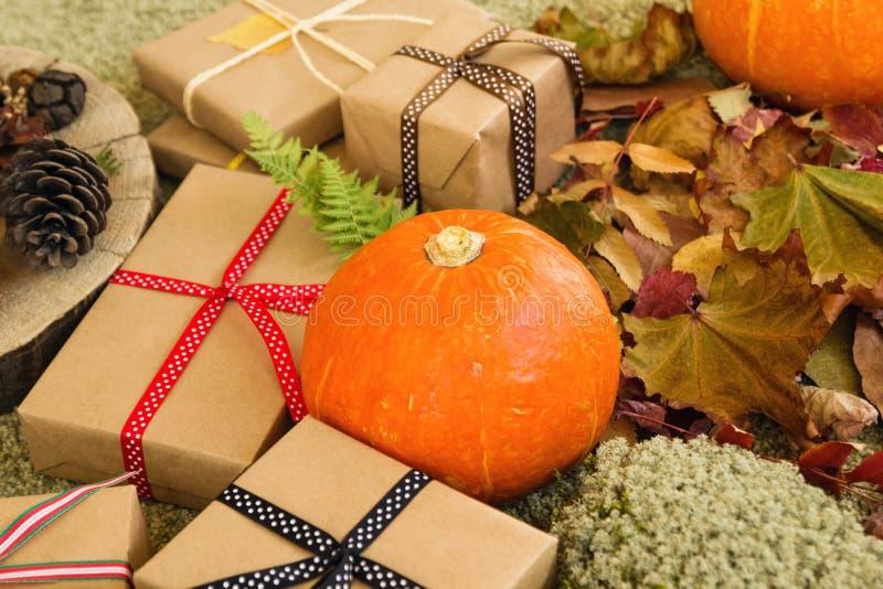 秋天静物画用南瓜、礼物盒被包裹工艺纸和五颜六色的丝带,干燥叶子,干燥青苔,蕨叶子  库存照片