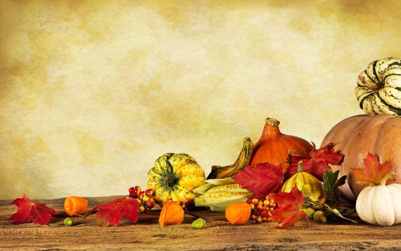 秋天静物画用南瓜和叶子 库存照片
