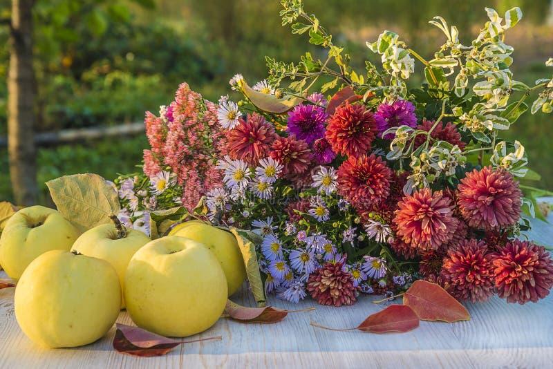 秋天静物画用成熟黄色苹果和花 库存图片