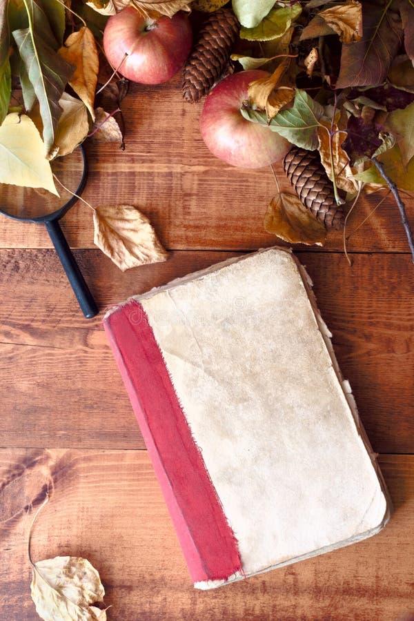 秋天静物画-在秋叶中的旧书在木背景 库存照片