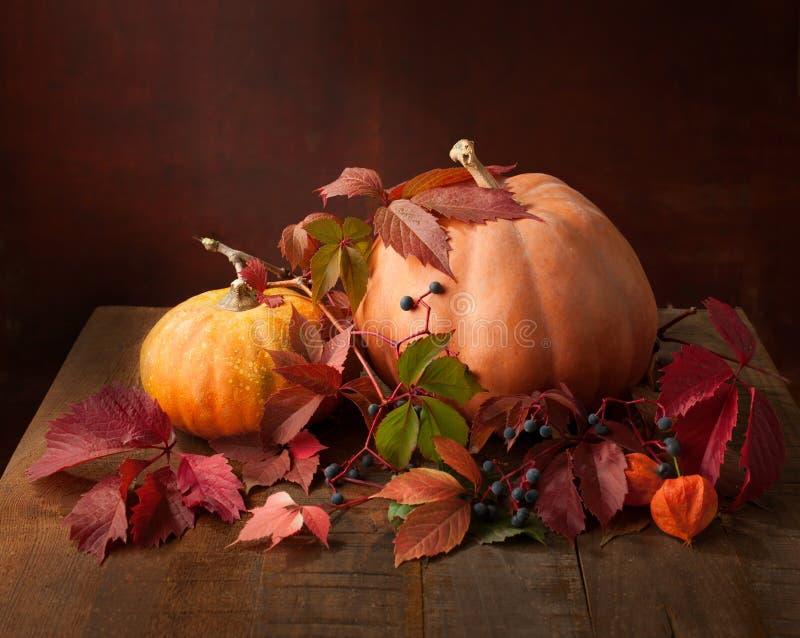 秋天静物画-南瓜、秋叶和空泡 免版税库存照片