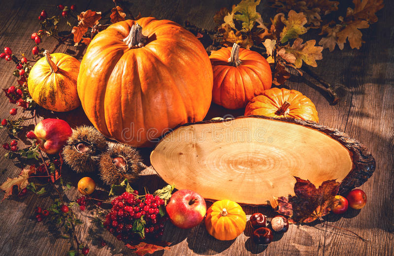 秋天静物画用南瓜、果子和莓果与拷贝sp 免版税库存照片