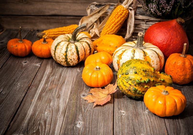 秋天静物画用南瓜和叶子 免版税库存照片