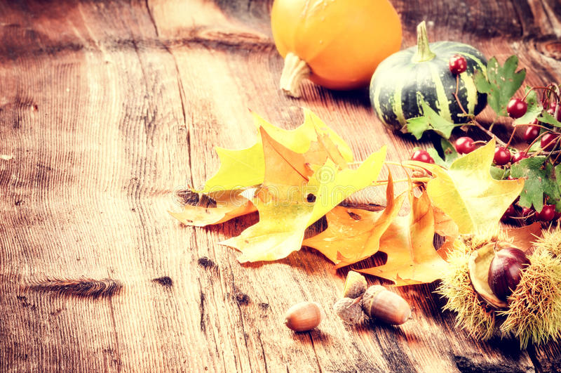 秋天静物画用南瓜和橡木叶子 免版税库存照片