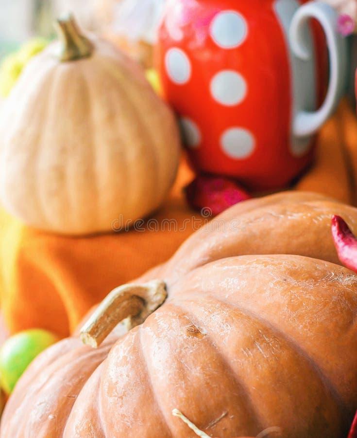 秋天静物画用南瓜,美丽黄色庄稼的书桌 库存照片