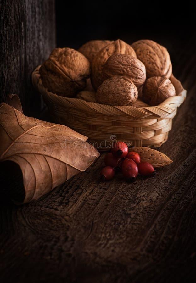 秋天静物画用核桃、叶子和野玫瑰果 库存图片