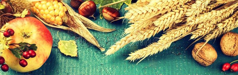 秋天静物画用玉米、苹果和秋天麦子 秋天横幅w 免版税图库摄影