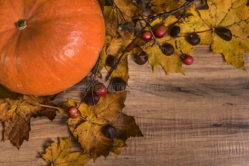 秋天静物画,南瓜,黄色叶子,栗子 免版税库存照片