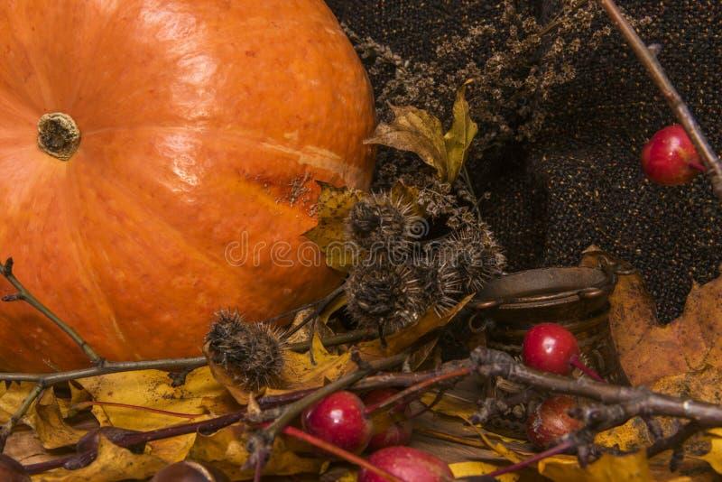 秋天静物画,南瓜,黄色叶子,栗子 库存图片