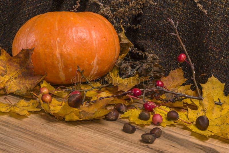 秋天静物画,南瓜,黄色叶子,栗子 免版税图库摄影
