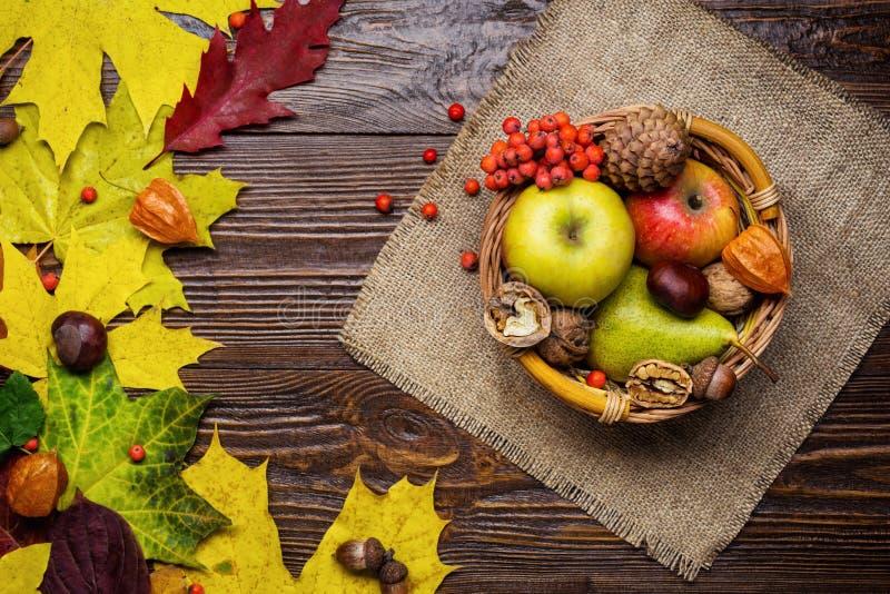 秋天静物画,收获与秋天叶子和秋天果子, 库存照片