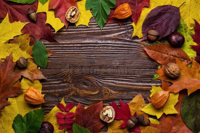 秋天静物画,秋天离开,秋天,拷贝空间礼物,求爱 免版税图库摄影