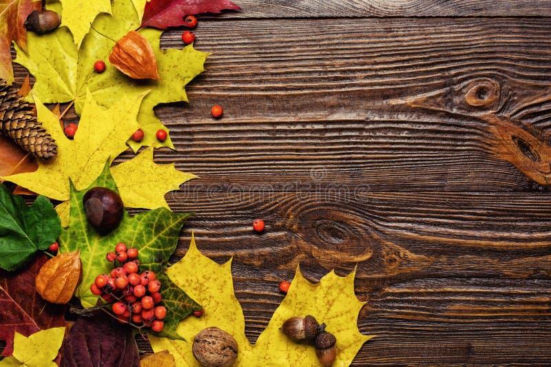 秋天静物画,秋天离开,秋天,拷贝空间礼物,求爱 免版税库存照片
