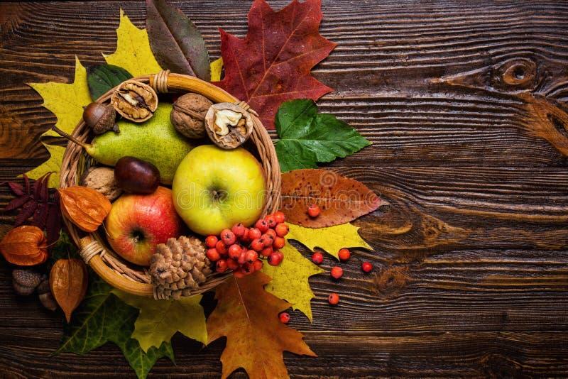 秋天静物画,被收获秋天果子,秋天, c礼物  库存图片