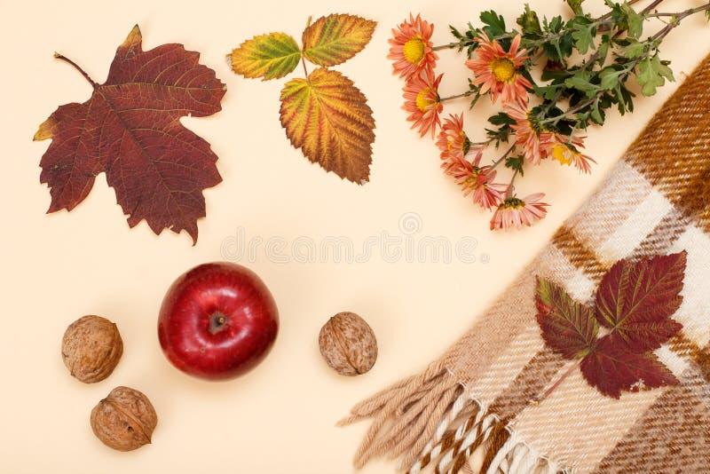 秋天题材 干燥叶子、花、苹果、核桃和格子花呢披肩在米黄背景 免版税图库摄影