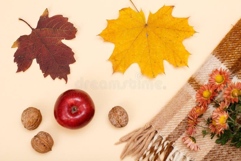 秋天题材 干燥叶子、苹果、核桃和格子花呢披肩在米黄背景 免版税库存照片