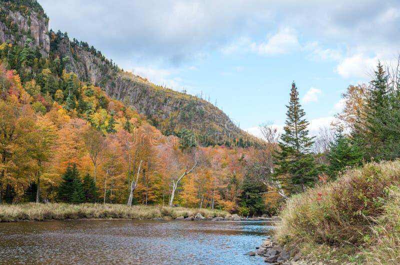 秋天颜色在普莱西德湖城NY 免版税库存照片