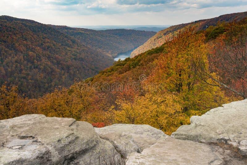 秋天颜色在木桶匠的森林晃动国家公园WV 免版税库存图片