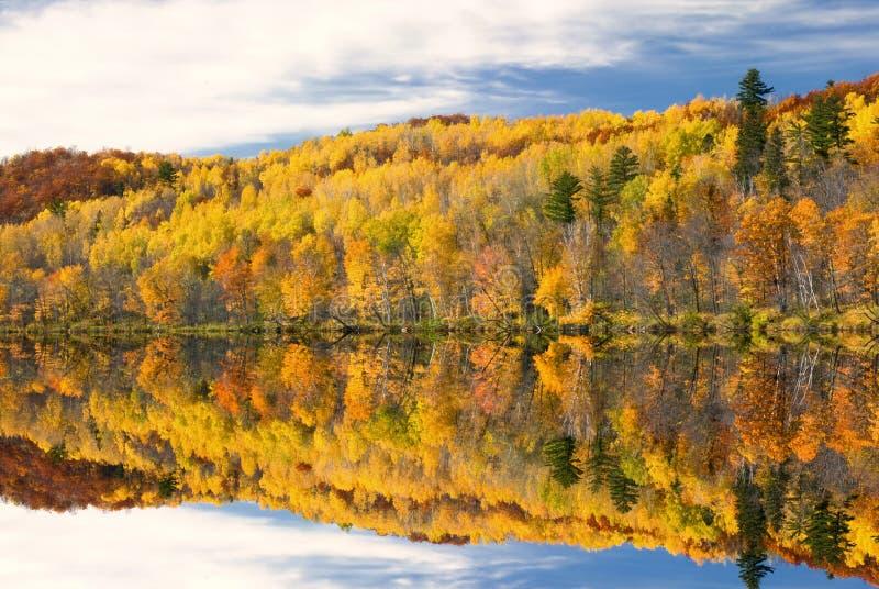 秋天颜色在湖,明尼苏达,美国反射了 免版税库存图片
