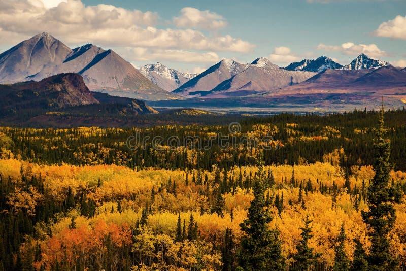 秋天颜色在蒂纳里状态和国立公园在阿拉斯加 免版税库存图片