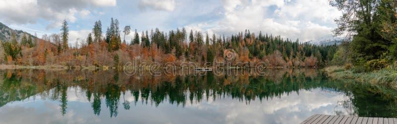 秋天颜色森林和叶子全景风景在瑞士的阿尔卑斯包围一个田园诗山湖在一晚秋天天 免版税库存照片