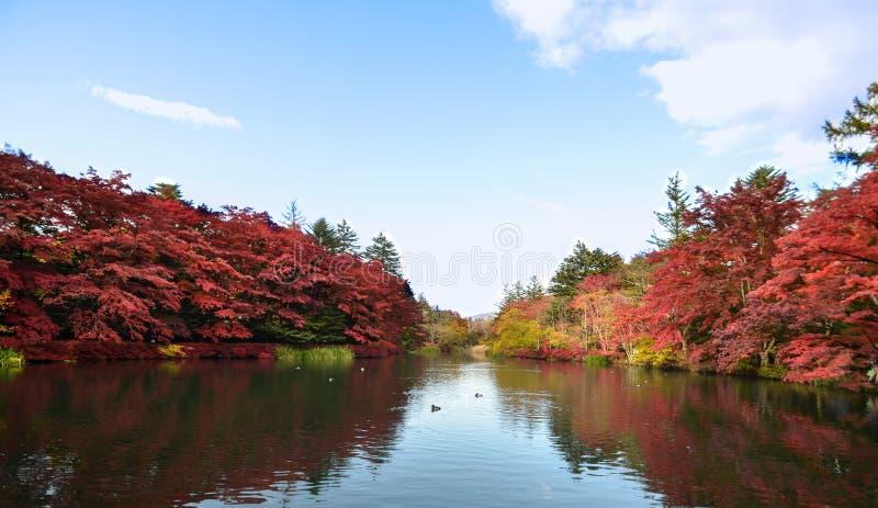 秋天颜色湖 库存图片