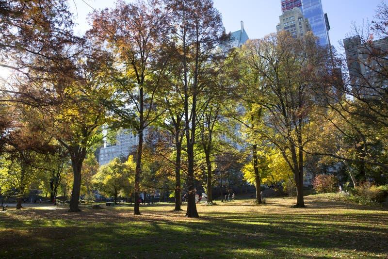 Download 秋天颜色的中央公园纽约 图库摄影片. 图片 包括有 风景, 户外, 曼哈顿, 约克, 城市, 结构树, 都市 - 62538407