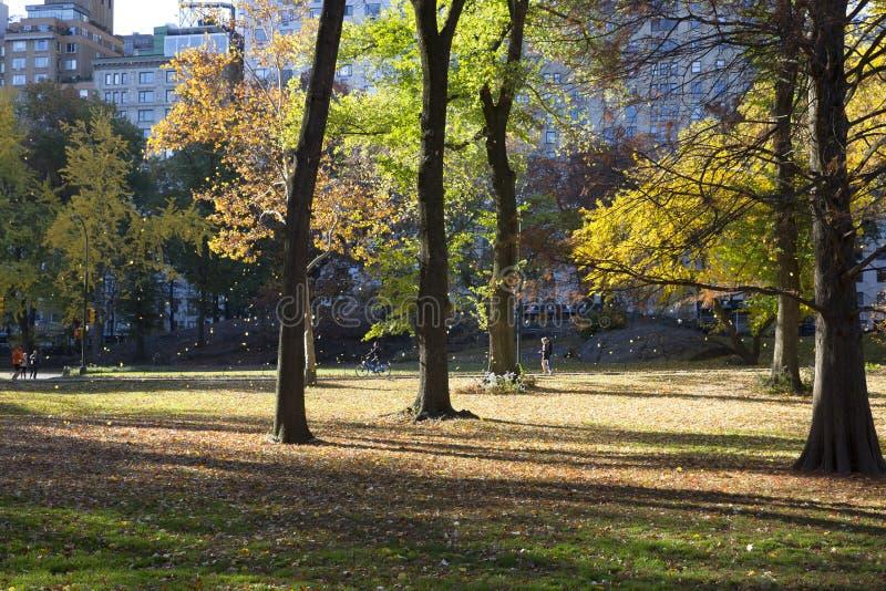 Download 秋天颜色的中央公园纽约 图库摄影片. 图片 包括有 地标, 五颜六色, 叶子, 贿赂, beautifuler - 62538492