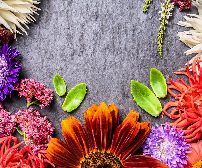 秋天颜色的装饰构成在黑暗的板岩背景的 免版税图库摄影