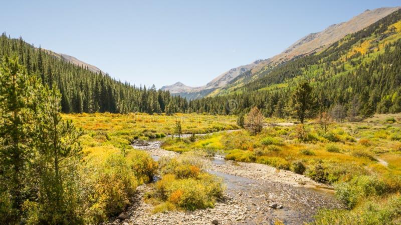 秋天颜色,杉木谷,大学峰顶原野的派克 免版税库存照片