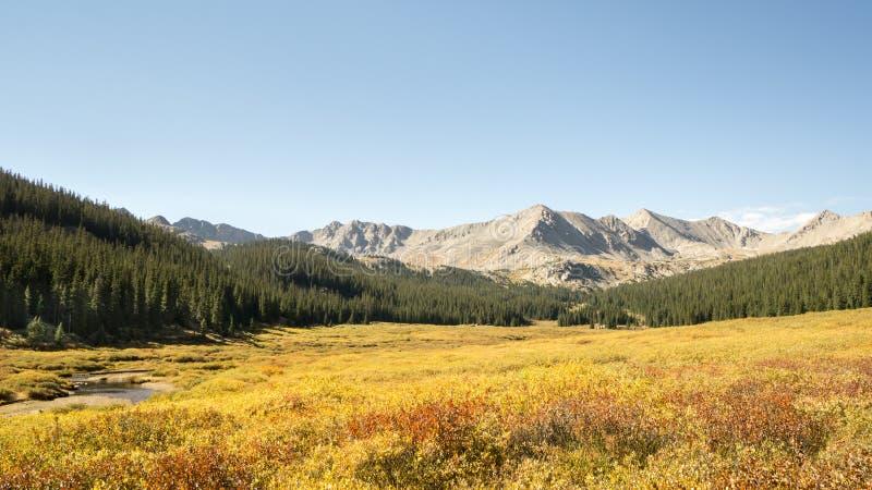 秋天颜色,杉木谷,大学峰顶原野的派克 免版税库存图片