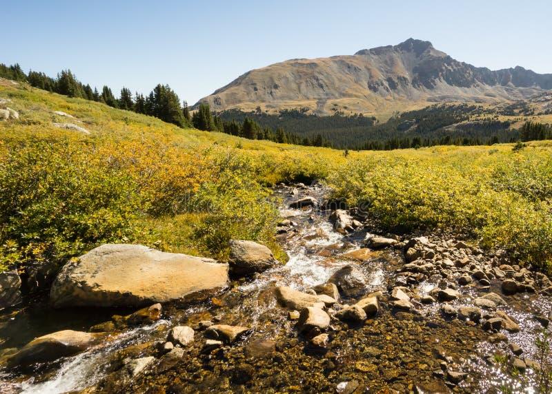 秋天颜色,杉木谷,大学峰顶原野的派克 库存图片