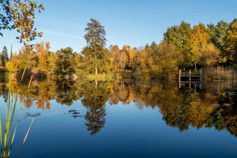 秋天风景和池塘 库存图片