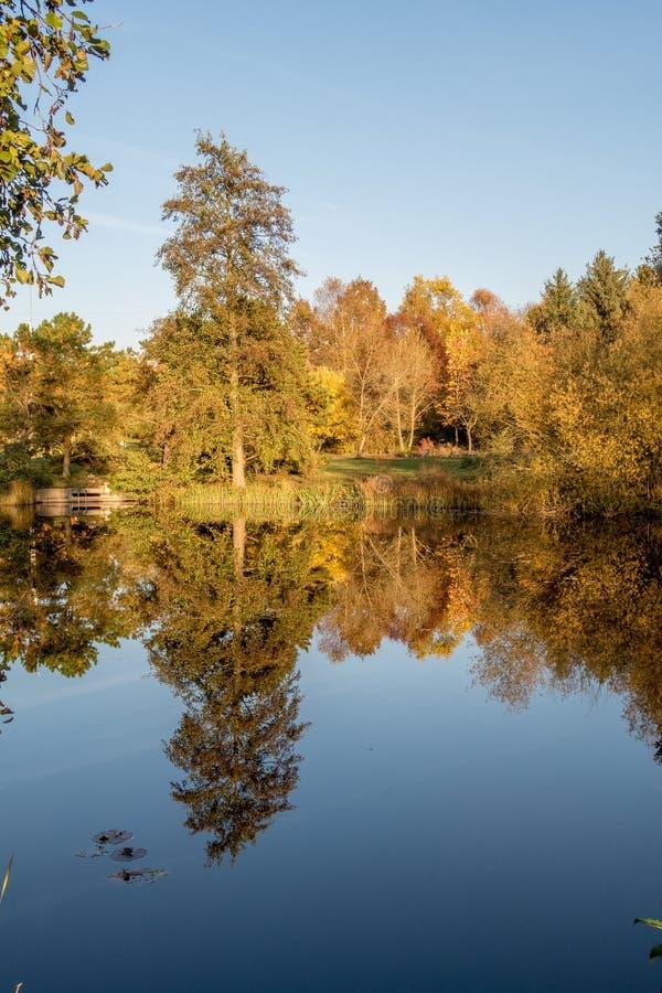 秋天风景和池塘 免版税库存照片