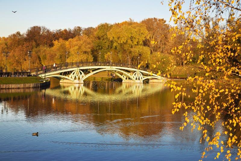 秋天风景在与桥梁的一个晴天横跨池塘在Tsaritsyno, 免版税库存照片