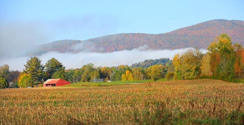 秋天风景在农村佛蒙特 库存照片