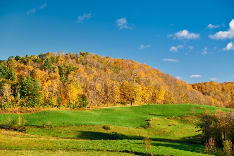 秋天风景在好日子在佛蒙特 免版税库存图片