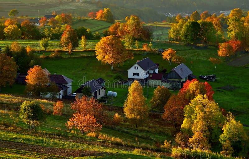 秋天风景在斯洛伐克 免版税库存图片