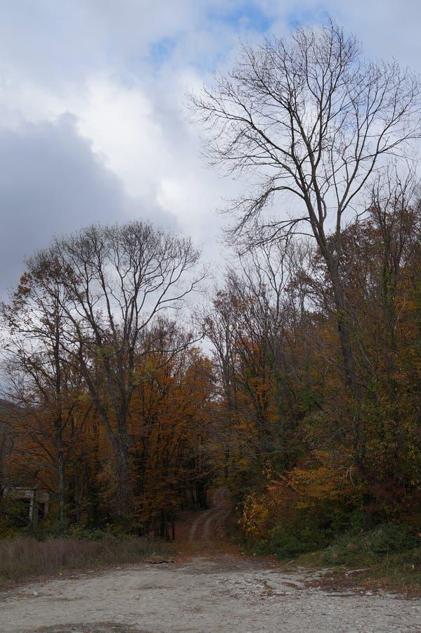 秋天风景在更加伟大的索契的郊区 库存照片