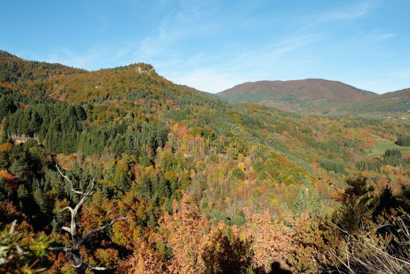秋天风景在比利牛斯,法国 库存图片
