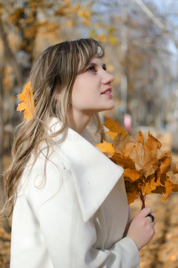 秋天风景的美丽的妇女 库存图片