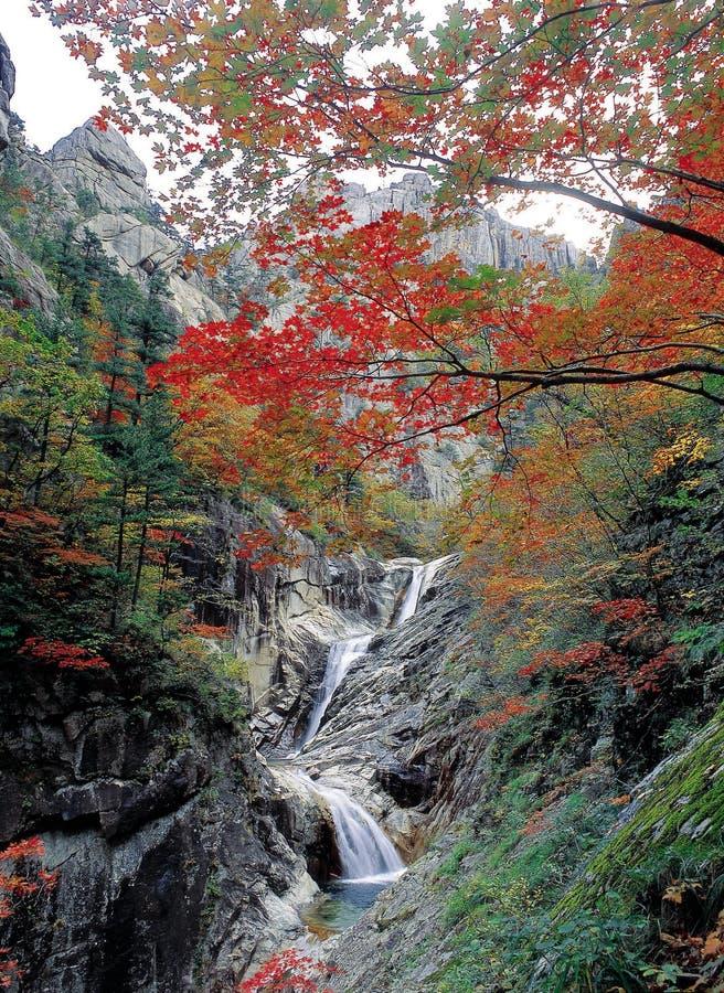 秋天风景 库存照片