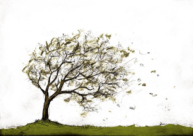 秋天风暴结构树 皇族释放例证