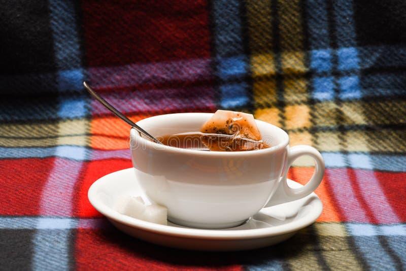 秋天饮料概念 有被浸洗的袋子的茶杯子在方格的格子花呢披肩的茶 酿造在杯子的饮料的过程 被填装的杯子 免版税图库摄影