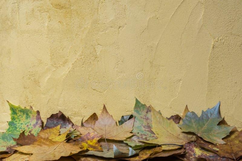 秋天:下落的叶子和墙壁作为背景 免版税图库摄影