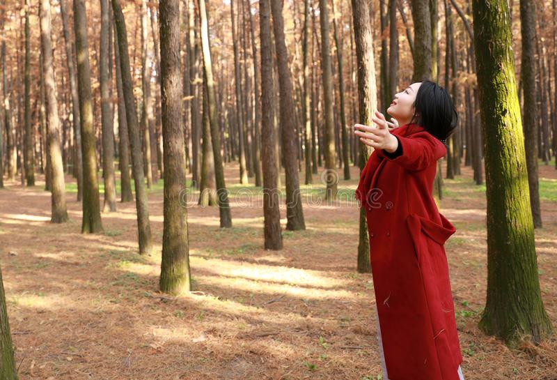 秋天/秋天美丽的妇女愉快在秋天公园容忍自然的自由自由姿势 免版税图库摄影