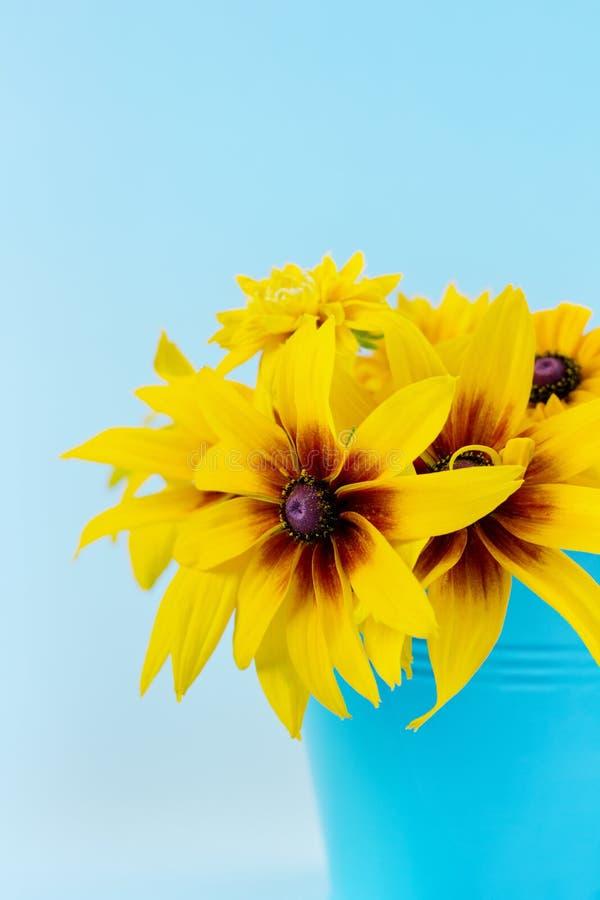 秋天黄色花花束  库存照片