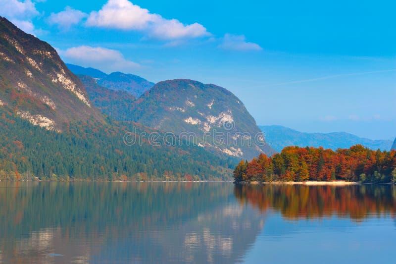 秋天bohinj森林湖山 库存照片