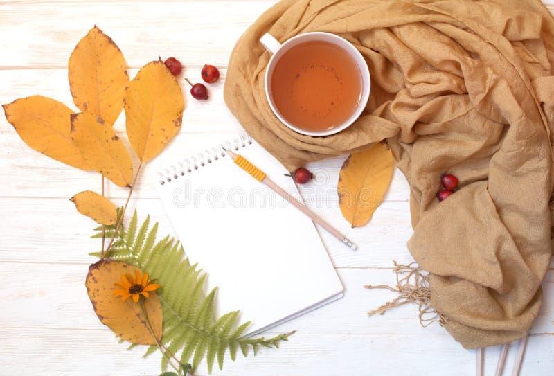 秋天flatlay在与一杯茶的白色木背景和f 图库摄影