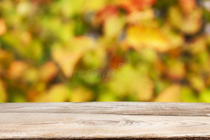 秋季主题 秋树背景木板 免版税库存照片